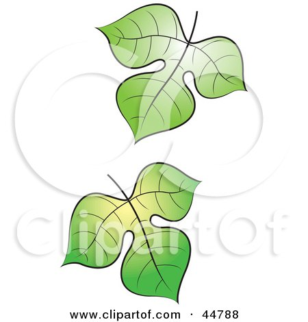 Royalty-free (RF) Clipart Illustration of Two Falling Green Tree Leaves by Lal Perera