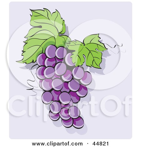 Royalty-free (RF) Clipart Illustration of a Bunch Of Purple Hanging Grapes With Two Leaves by Lal Perera