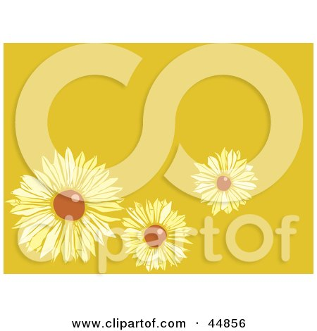 Royalty-free (RF) Clipart Illustration of a Yellow Background With Three Brown Eyed Susans by xunantunich