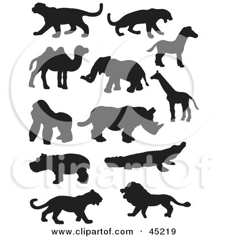 Royalty-free (RF) Clipart Illustration of a Digital Collage Of Profiled Black Silhouetted Wildlife by JR