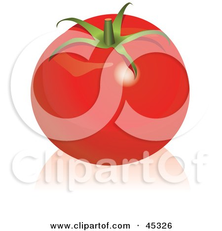Royalty-free (RF) Clipart Illustration of a Shiny Organic Red Tomato by Oligo