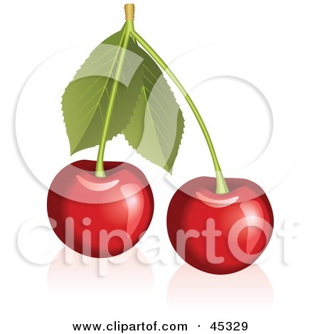 Royalty-free (RF) Clipart Illustration of a Fresh And Shiny Stem With Cherries by Oligo