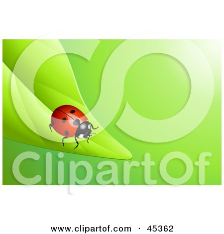 Royalty-free (RF) Clipart Illustration of a Bright Red Ladybug Crawling To The End Of A Green Leaf by Oligo