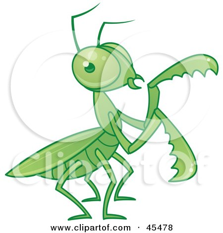 Royalty-Free (RF) Clipart Illustration of a Green Praying Mantis Moving Its Arms by John Schwegel
