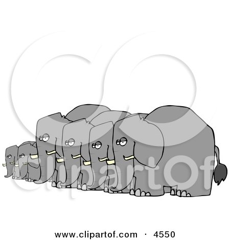 Herd of Small and Big Elephants Standing Together in a Row Posters, Art Prints