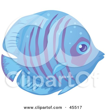 Royalty-free (RF) Clipart Illustration of a Shy Blue And Purple Striped Fish In Profile by John Schwegel