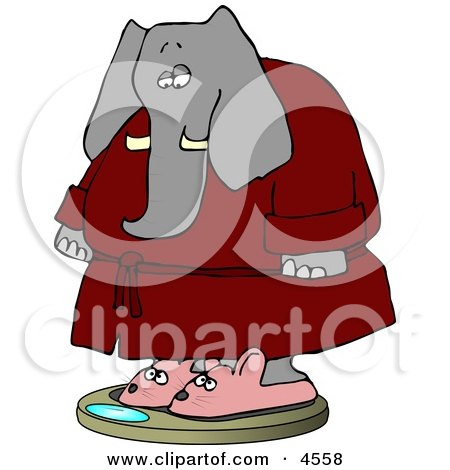 Anthropomorphic Elephant Wearing Bathrobe and Mouse Slippers While Weighting In On a Scale Posters, Art Prints