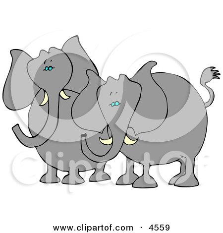Two Elephants with Tusks Standing Beside Each Other Posters, Art Prints