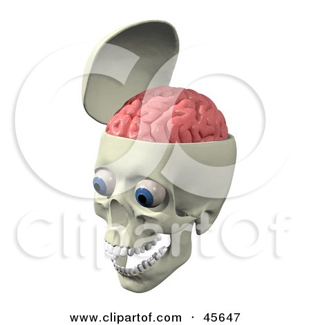 Skull With The Pink Brain Exposed, Big Blue Eyes And Teeth In The Jaw Posters, Art Prints