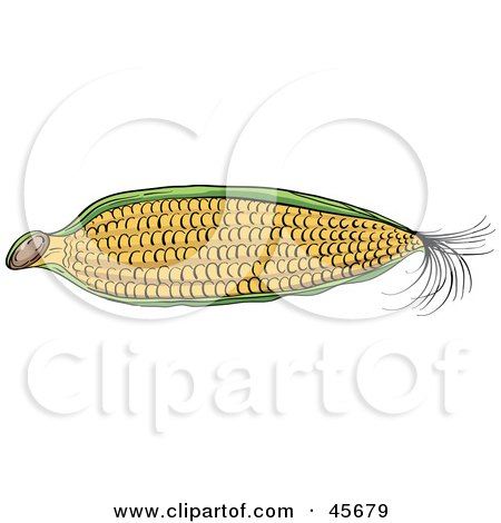 Royalty-free (RF) Clipart Illustration of a Partially Husked Ear Of Corn by pauloribau
