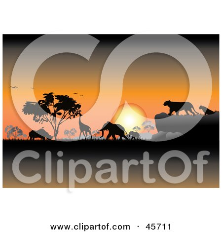 Orange Safari Sunset Silhouetting Animals And Trees Posters, Art Prints