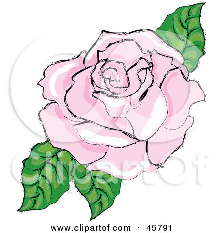 Royalty-free (RF) Clipart Illustration of a Fully Bloomed Pink Rose Blossom With Leaves by Pams Clipart