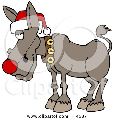 Red-Nosed Donkey Wearing Christmas Santa Hat Posters, Art Prints