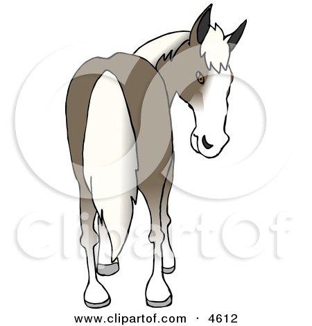 Horse's Rear End Clipart by djart