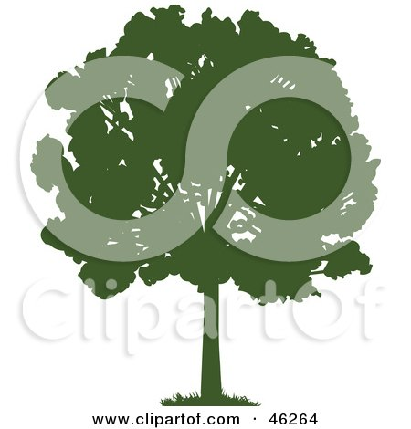 Royalty-Free (RF) Clipart Illustration of a Green Silhouetted Mature Park Tree by Tonis Pan