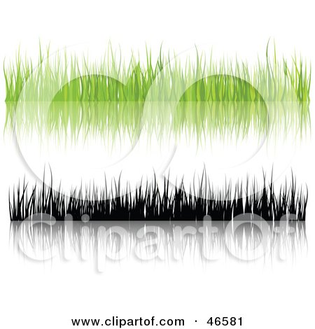 Royalty-Free (RF) Clipart Illustration of a Digital Collage Of Green And Black Silhouetted Grass Blades With Reflections On White by KJ Pargeter
