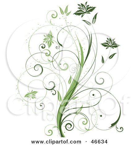 Royalty-Free (RF) Clipart Illustration of a Beautiful Organic Green Plant With Tendril Leaves On White by KJ Pargeter