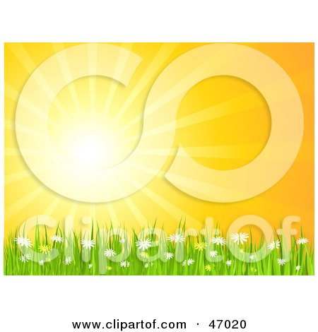 Royalty-Free (RF) Clipart Illustration of a Bright Summer Sun Burst Over Daisy Flowers And Grass by KJ Pargeter