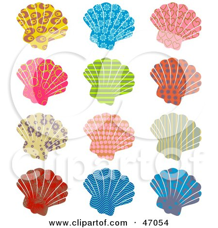 Royalty-Free (RF) Seashell Clipart, Illustrations, Vector ...