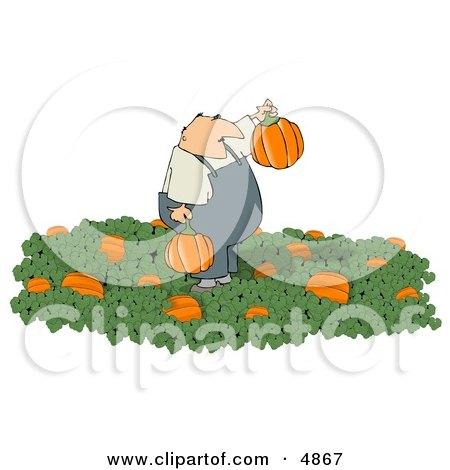 Farmer Harvesting Halloween Pumpkins from a Pumpkin Patch Clipart by djart