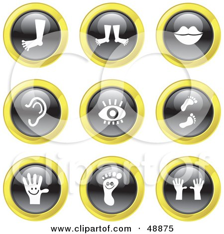 Royalty-Free (RF) Clipart Illustration of a Digital Collage Of Black, White And Yellow Anatomy Icons by Prawny