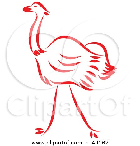 Red Ostrich Posters, Art Prints