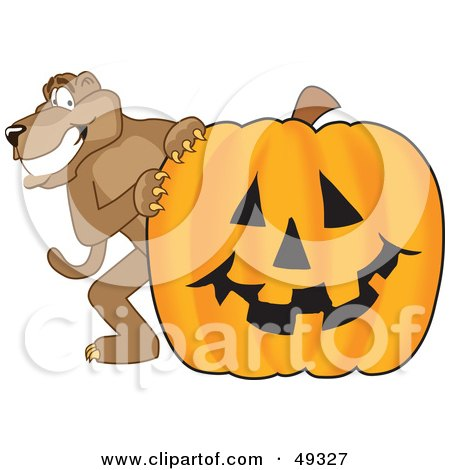Royalty-Free (RF) Clipart Illustration of a Cougar Mascot Character With a Pumpkin by Toons4Biz