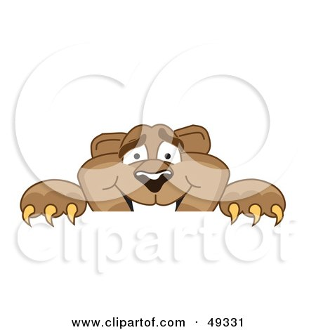 Royalty-Free (RF) Clipart Illustration of a Cougar Mascot Character Peeking Over a Surface by Toons4Biz