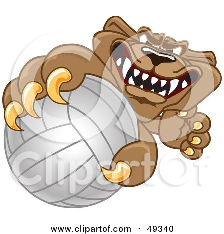 Royalty-Free (RF) Clipart Illustration of a Cougar Mascot Character Grabbing a Volleyball by Toons4Biz