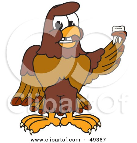 Royalty-Free (RF) Clipart Illustration of a Falcon Mascot Character Holding a Missing Tooth by Toons4Biz