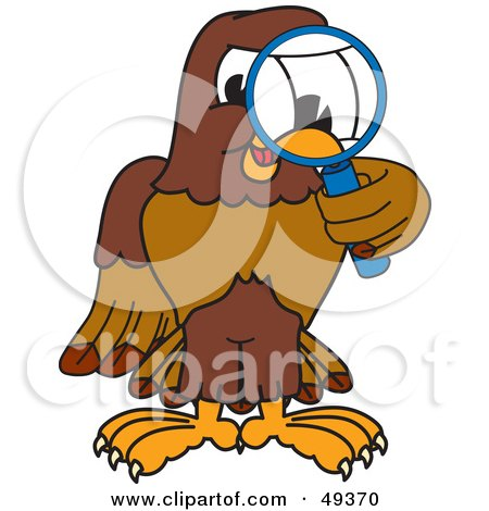 Royalty-Free (RF) Clipart Illustration of a Falcon Mascot Character Using a Magnifying Glass by Toons4Biz