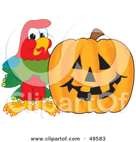 Royalty-Free (RF) Clipart Illustration of a Macaw Parrot Character Mascot With a Pumpkin by Toons4Biz