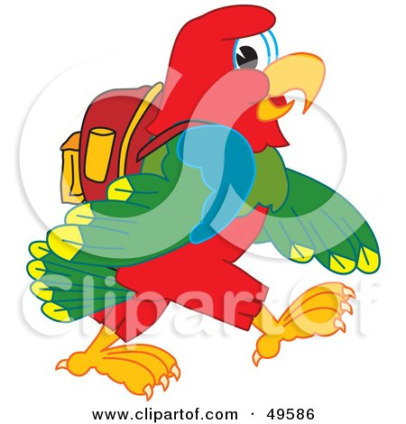 Macaw Parrot Character Mascot Walking to School Posters, Art Prints