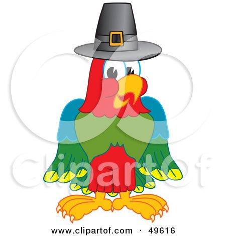 Royalty-Free (RF) Clipart Illustration of a Macaw Parrot Character Mascot Wearing a Pilgrim Hat by Toons4Biz