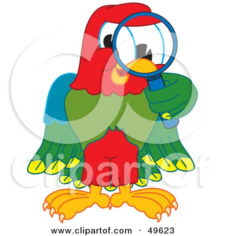 Royalty-Free (RF) Clipart Illustration of a Macaw Parrot Character Mascot Using a Magnifying Glass by Toons4Biz