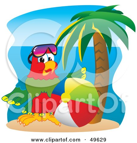 Royalty-Free (RF) Clipart Illustration of a Macaw Parrot Character Mascot With a Beach Ball by Toons4Biz