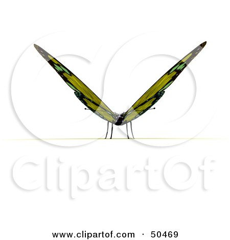 Clipart Illustration of a Yellow 3d Butterfly Resting With Its Wings Open, Facing Front by Frank Boston