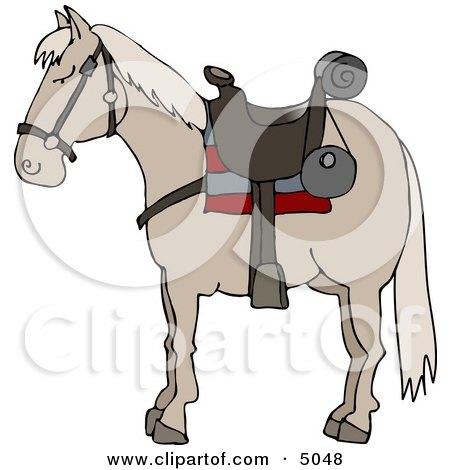 Riderless Horse Wearing Saddle Posters, Art Prints