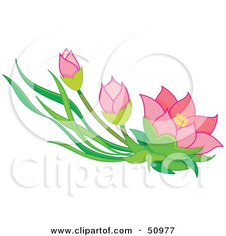 Royalty-Free (RF) Clipart Illustration of Pink Oriental Flowers and Buds by Cherie Reve