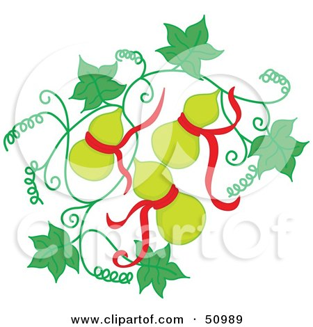 Royalty-Free (RF) Clipart Illustration of Green Oriental Fruit With Red Ribbons On A Vine by Cherie Reve
