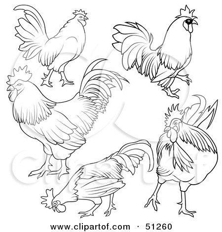Royalty-Free (RF) Clipart Illustration of a Digital Collage Of Rooster Outlines - Version 1 by dero