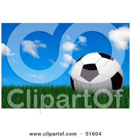 Royalty-Free (RF) Clipart Illustration of a Soccer Ball Resting Still On Green Grass Under A Blue Sky by stockillustrations