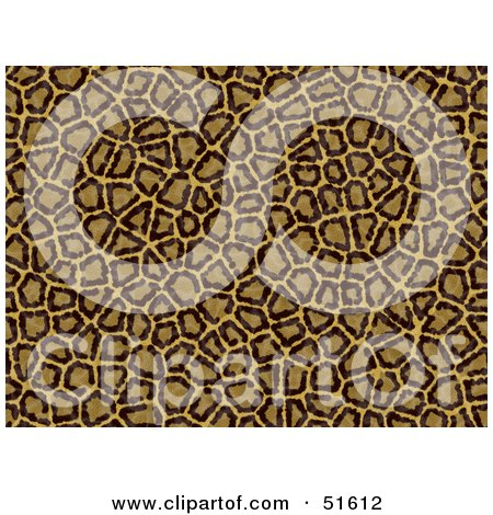 Royalty-Free (RF) Clipart Illustration of a Background of Leopard Print by stockillustrations