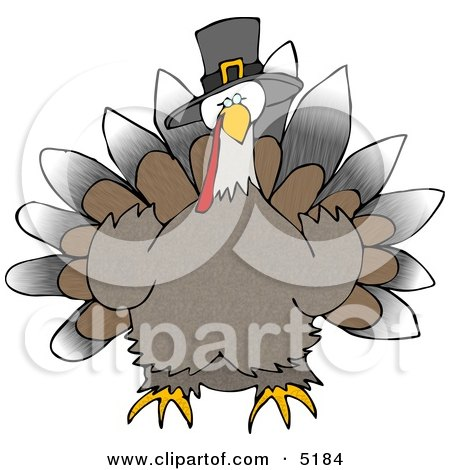 Wild Thanksgiving Turkey Wearing Pilgrim Hat Clipart by djart