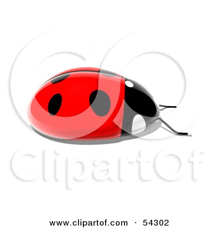 Royalty-Free (RF) Clipart Illustration of a 3d Shiny Ladybird - Pose 4 by Julos