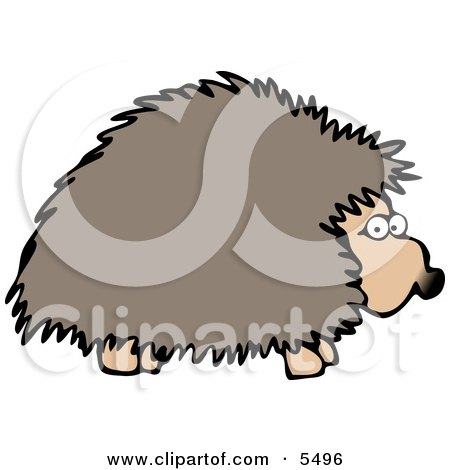 Adult Hedgehog Foraging At Night For Food Clipart Illustration