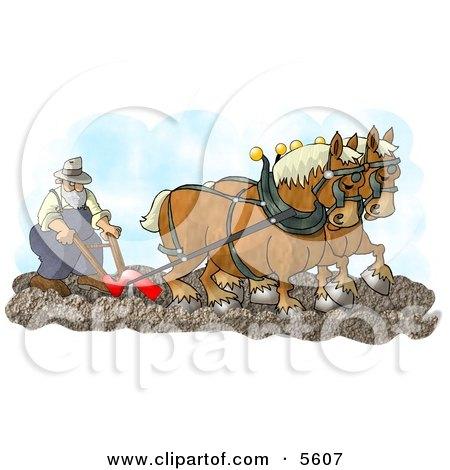 Belgian Horses Pulling a Farmer On a Plough Posters, Art Prints