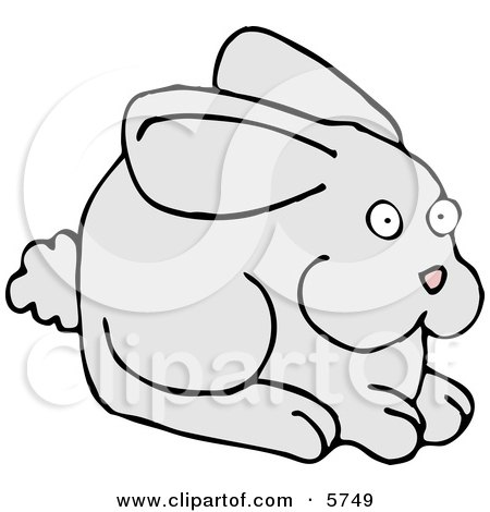 Alert Gray Bunny with a Puffy Tail and Pink Nose Posters, Art Prints