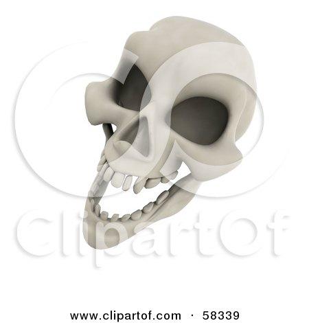 3d Human Skeleton Head Laughing Posters, Art Prints