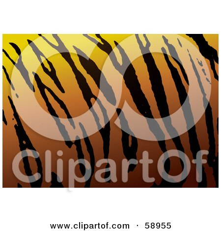 Royalty-Free (RF) Clipart Illustration of a Patterned Tiger Skin Print Background by michaeltravers